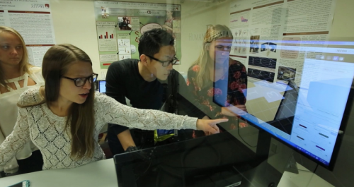 Student pointing at computer screen
